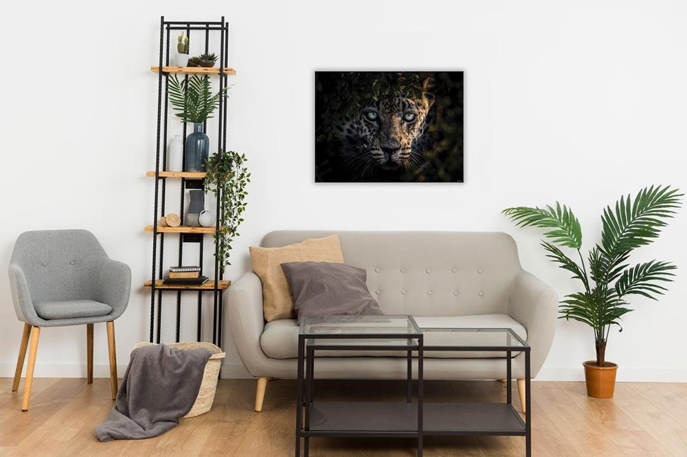 Wandbild Afrika Leopard